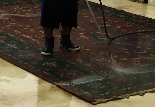 Pride Carpet Cleaning Service Oriental Persian Antique
